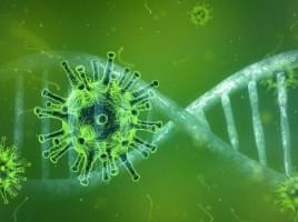 coronavirus-4833754_960_720-845x475