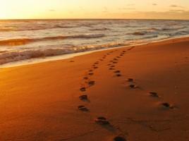 Traces-de-pas-sur-le-sable2