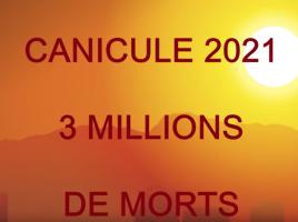 Capture d'écran 2021-02-24 à 12.18.16