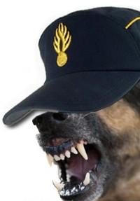 chien gendarme-en-colère