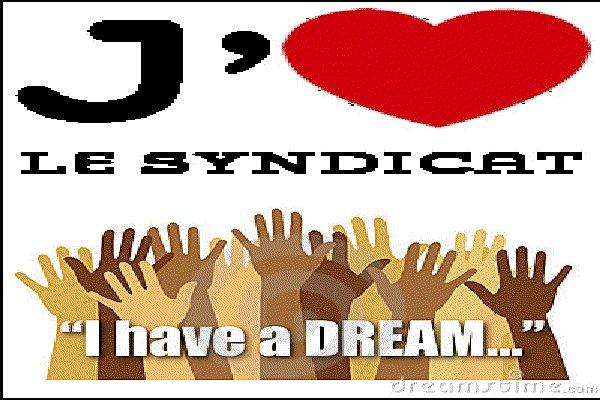 syndicat dream