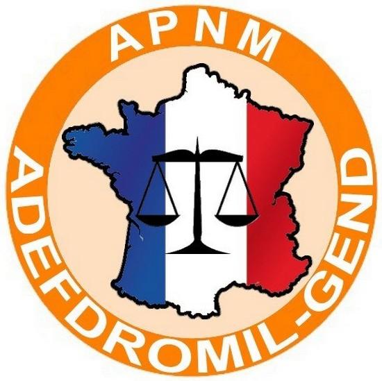 Logo-adefdromil-gend-finalise-300x300.JPG