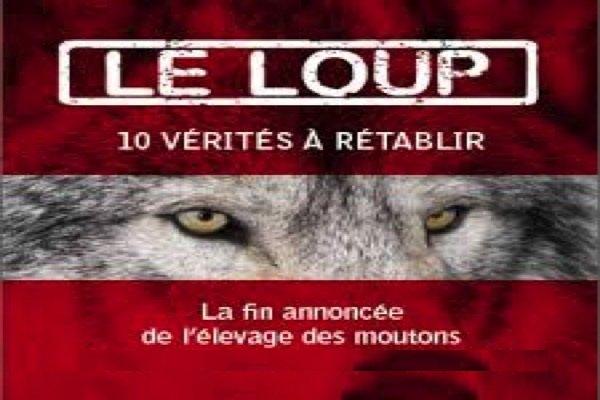 LOUPS_moutons_600x400
