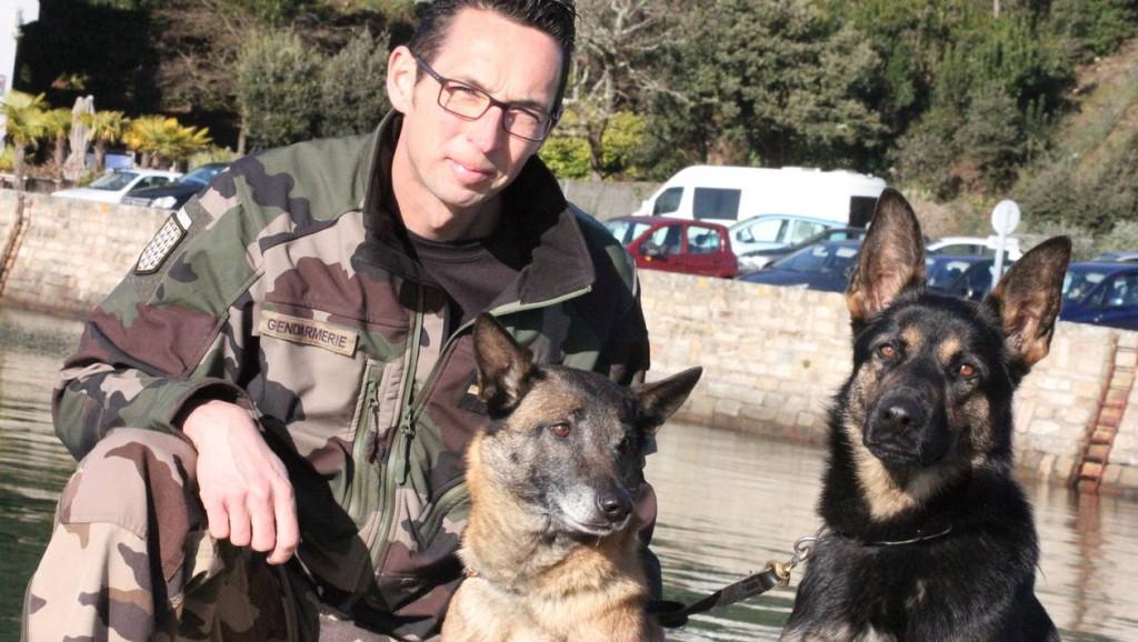 5eb00f694c4350d06f50bf231588ea54-morbihan-ces-chiens-de-la-gendarmerie-qui-cherchent-defendent-et-sauvent