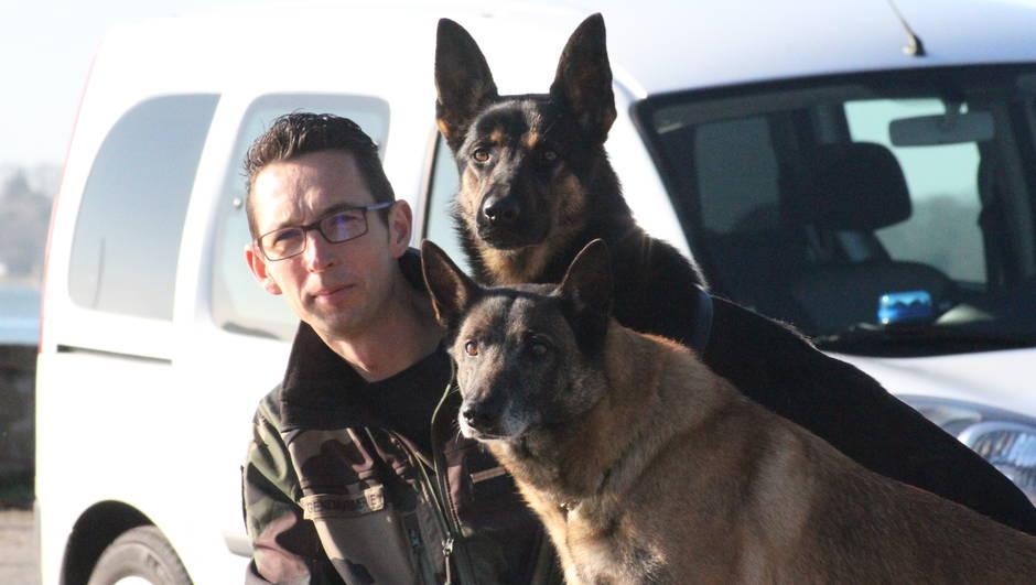 f8275273494d0d31315a8eb336a3fdfd-morbihan-ces-chiens-de-la-gendarmerie-qui-cherchent-defendent-et-sauvent_0