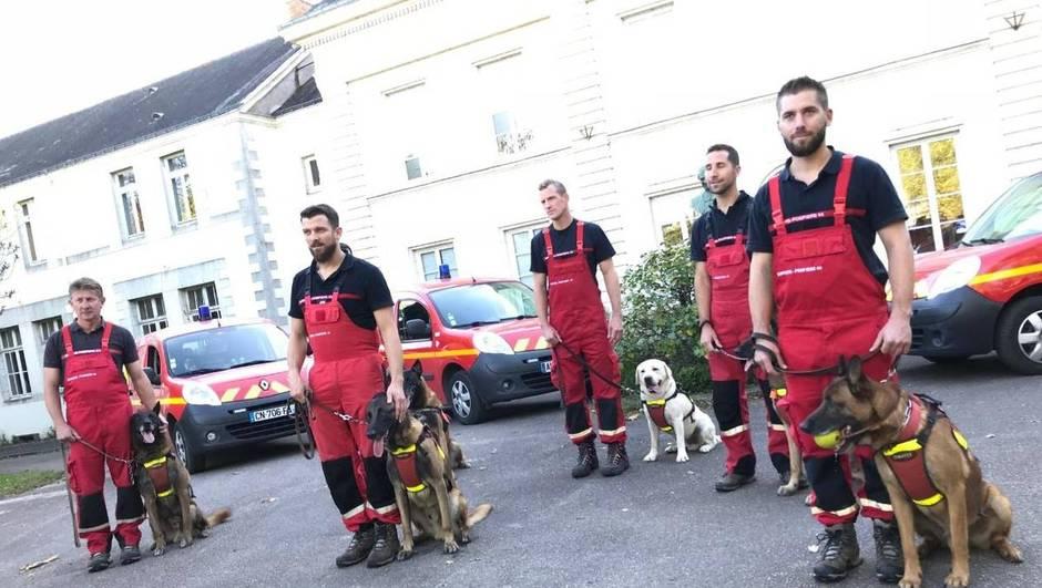 1004cf39001282f204e6f720791fdf17-au-sud-de-nantes-une-octogenaire-sauvee-par-le-chien-des-pompiers_3