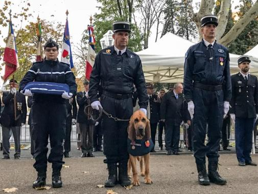 48356_5be328d1e5a48_montpellier--une-medaille-pour-jupiter-un-chien-gendarme
