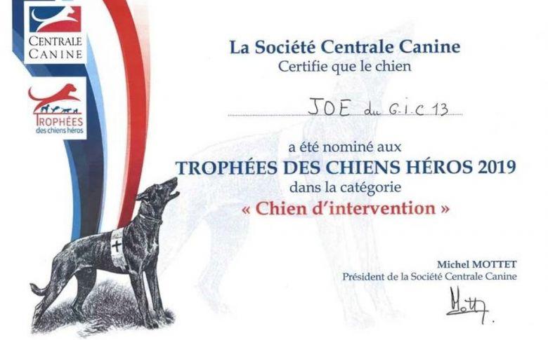 diplome_trophees_des_chiens_heros_2019-4252749