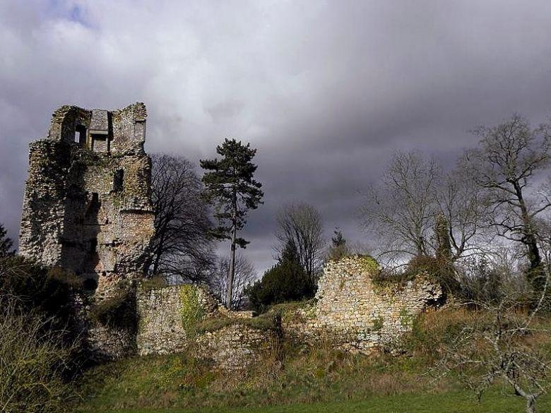 saint-aubin-du-cormier_35_chateau_03-4287614