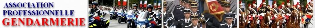https://www.profession-gendarme.com/wp-content/uploads/2018/06/bandeau-Asso-APG-1024x91.jpg