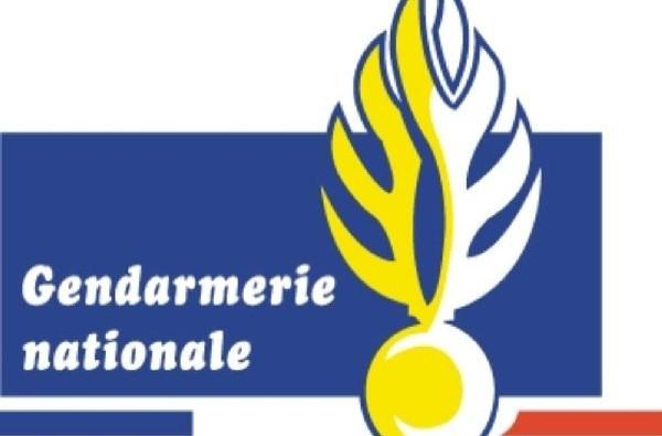 LOGO gendarmerie600x400