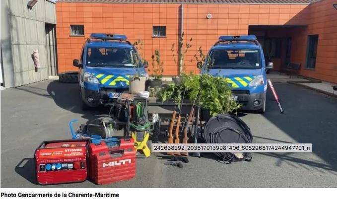 Charente-Maritime : L'escapade en amoureux dans les bois interrompue par des coups de feu